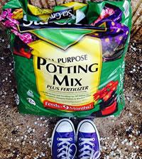 gardening ideas for children